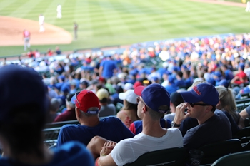 CUBS GAME EXPERIENCE